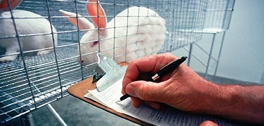 Animal Research & Veterinary Care